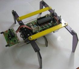 Altı Ayaklı Robot (Montajlı)